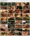 Diary Of An Orgy / Дневник одной оргии (Paul Thomas, Vivid) (2004) DVDRip | 962.35 MB