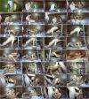 Долгожданный секас с любимой девочкой Лизой / Lisa (2012) HD 720p | 699.05 MB