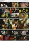 Peepshow (Philippe Soine, Marc Dorcel) (2013) HDTV | 1.49 GB