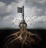 Creative Tree Concept - 25xJPG
