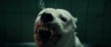 Догмэн / Dogman [2018 / BDRip | HDRezka Studio]