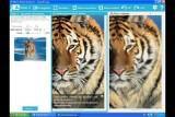InPixio Photo Maximizer Pro 5.2.7759.20869  + RePack/Portable