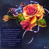 Renderosity - Moonbeams Roses in my garden (PNG, JPG)