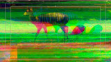 Aescripts Rowbyte TV Distortion Bundle 2.6.0 + RePack Plug-ins for AE & AP